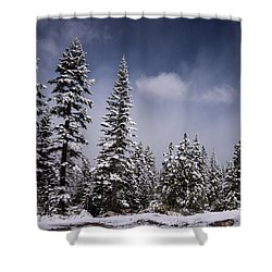 Shower Curtain featuring the photograph Winter Again by Janis Knight