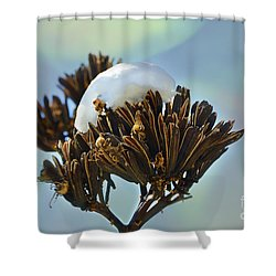 Winter Agave Bloom Shower Curtain