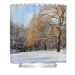 Winter Along The River Shower Curtain by Nina Silver