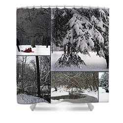 Shower Curtain featuring the photograph Winter At Petrifying Springs Park by Kay Novy