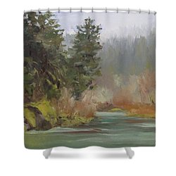 Winter At Swiftwater Shower Curtain