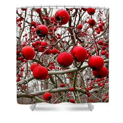 Winter Berryscape Shower Curtain