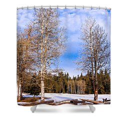 Winter Birch Shower Curtain