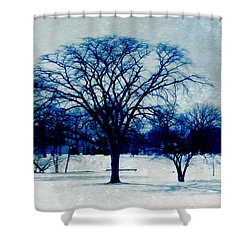 Winter Blues Shower Curtain by Shawna Rowe