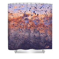Winter Breeze Shower Curtain