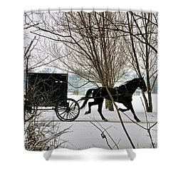 Winter Buggy Shower Curtain