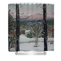 Winter - Cabin - Pink Knob Shower Curtain