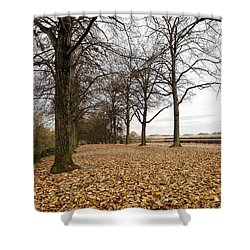 Winter Calling Shower Curtain