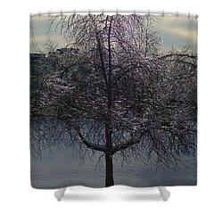 Winter Candelabrum Shower Curtain by Henryk Gorecki