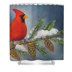 Winter Cardinal 2 Shower Curtain
