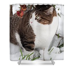 Shower Curtain featuring the photograph Winter Cat by Laura Melis