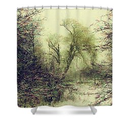Winter Colours Shower Curtain