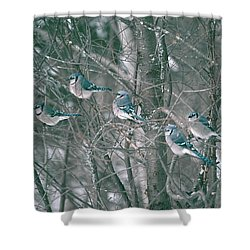 Winter Conference Shower Curtain
