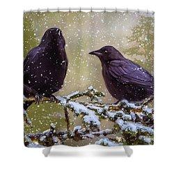 Winter Crows Shower Curtain by Ken Morris