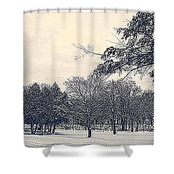 Winter Days Shower Curtain by Kay Novy