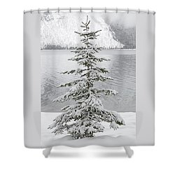 Winter Decor Shower Curtain by Diane Bohna