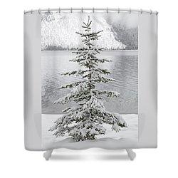 Winter Decor Shower Curtain