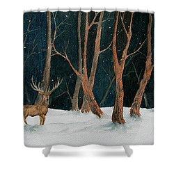 Winter Deer Shower Curtain
