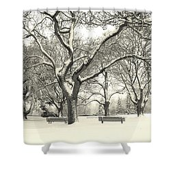 Winter Delight Shower Curtain