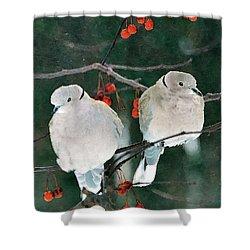Winter Doves Shower Curtain