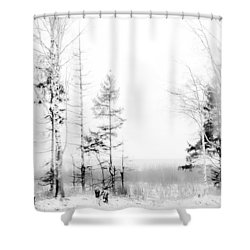 Winter Drawing Shower Curtain