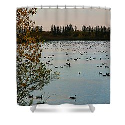 Shower Curtain featuring the photograph Winter Escape Gathering by Teresa Zieba