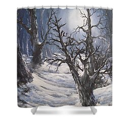 Shower Curtain featuring the painting Winter Eve by Megan Walsh