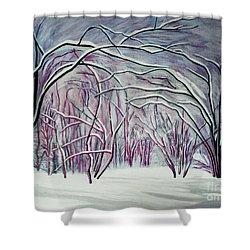 Winter Fairies Shower Curtain by Barbara McMahon