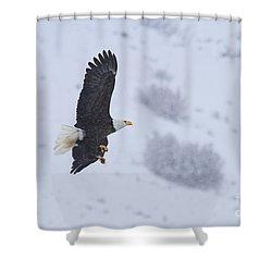 Winter Flight Shower Curtain by Mike  Dawson