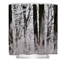 Winter Forest 1 Shower Curtain by Heiko Koehrer-Wagner