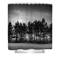 Shower Curtain featuring the photograph Winter Forest by Frodi Brinks