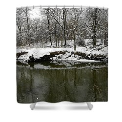 Winter Forest Series 2 Shower Curtain by Verana Stark