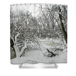 Winter Forest Series 3 Shower Curtain by Verana Stark