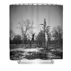Winter Forest Series 4 Shower Curtain by Verana Stark