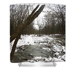 Winter Forest Series Shower Curtain by Verana Stark