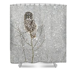 Winter Ghost Shower Curtain
