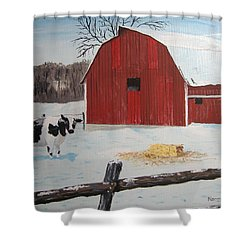 Winter Haven Shower Curtain by Norm Starks