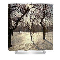 Willows In Winter Shower Curtain by Henryk Gorecki