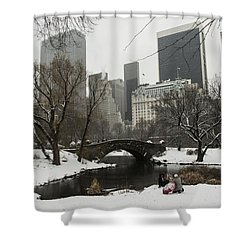 Winter In Central Park Shower Curtain