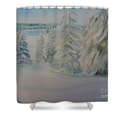 Shower Curtain featuring the painting Winter In Gyllbergen by Martin Howard