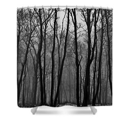 Winter In Pennsylvania Shower Curtain by Benjamin Yeager