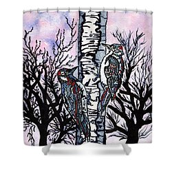 Winter In The Country Shower Curtain by Connie Valasco