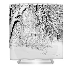 Winter Lace II Shower Curtain by Jenny Rainbow
