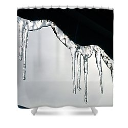 Winter Lace Shower Curtain by Yelena Tylkina