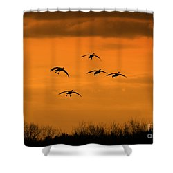 Winter Landing No.2 Shower Curtain