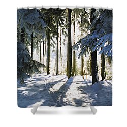 Winter Landscape Shower Curtain by Aged Pixel