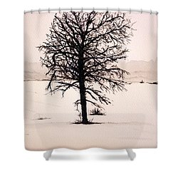 Winter Landscape Shower Curtain by Betty-Anne McDonald
