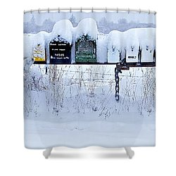 Winter Mailbox Panorama Shower Curtain