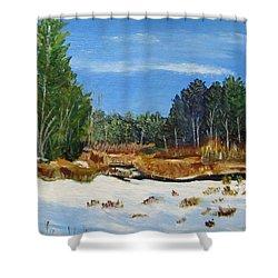 Shower Curtain featuring the painting Winter Marsh In Hooksett by Linda Feinberg