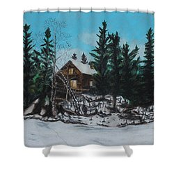 Winter Marshland Shower Curtain